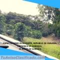 Farm en Boquete Republic of Panamá, 39 acres